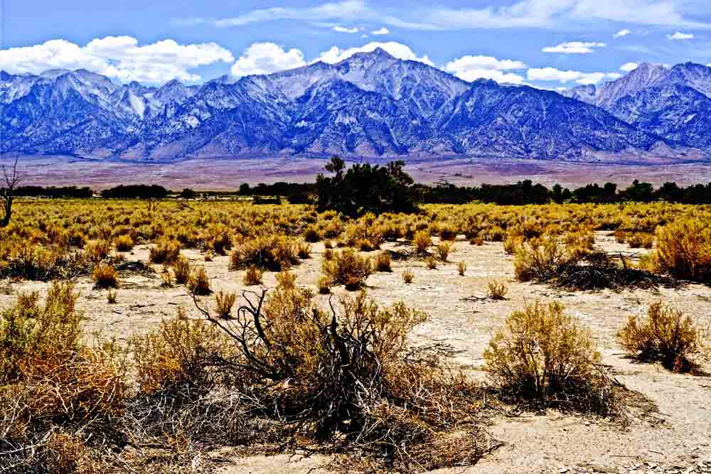 Sierra Nevadas, California, July 2014