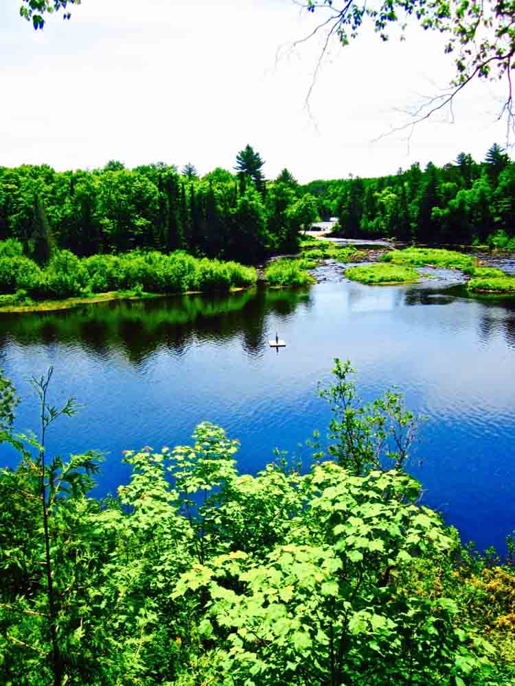 Tahquamenon Falls, U.P., Michigan, June 2011