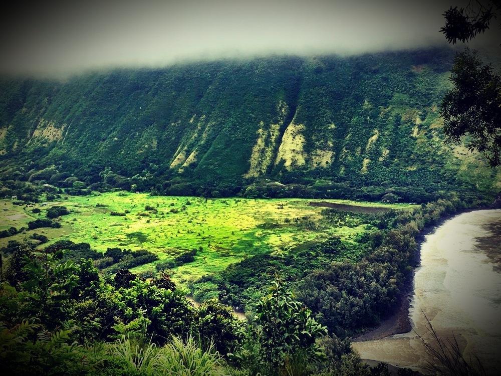 Waimea, Big Island, Hawaii, April 2016