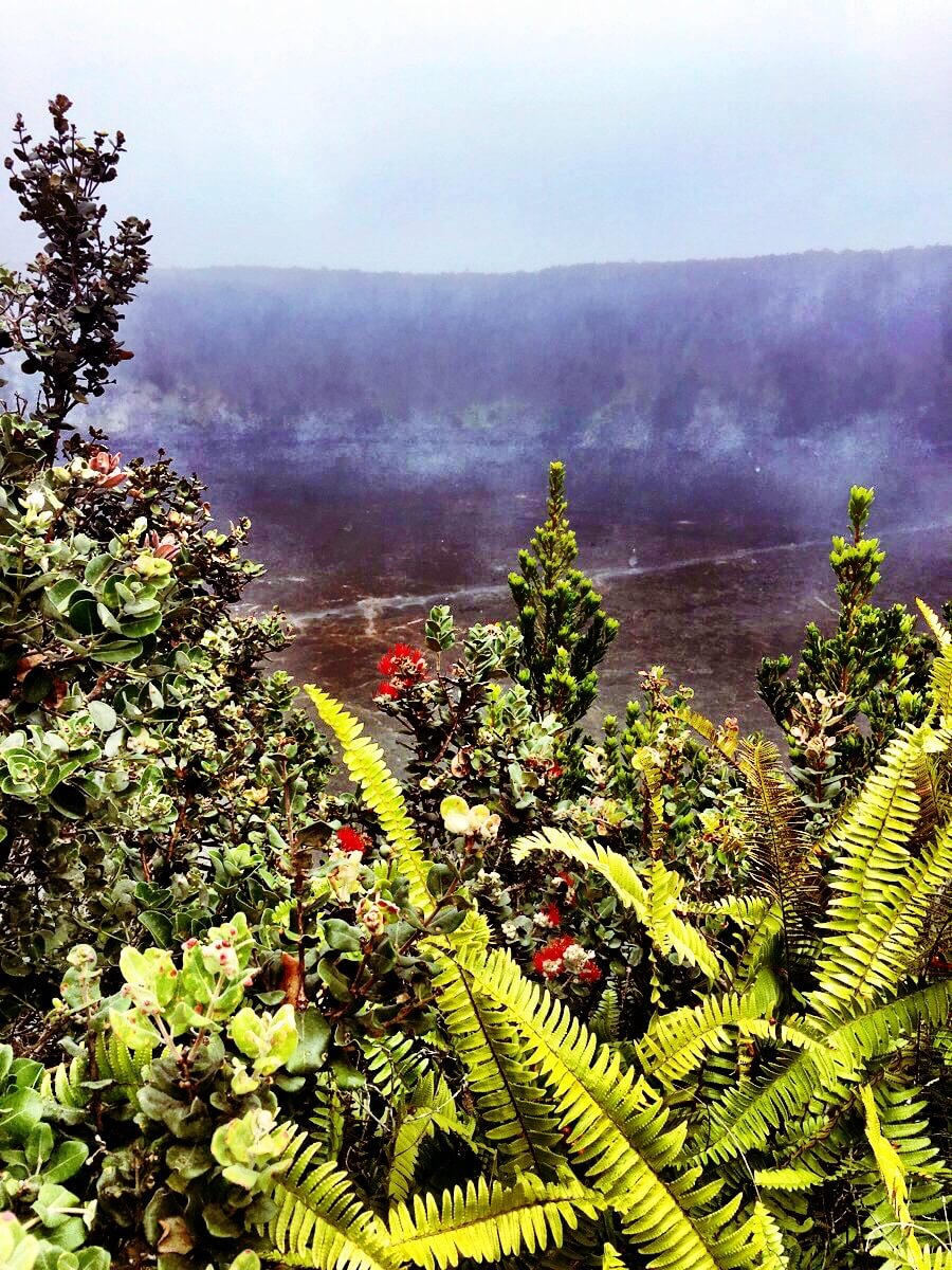 Volcanoes National Park, Big Island, Hawaii, April 2016