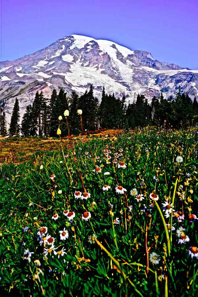 Mt. Rainier, Washington, September 2012