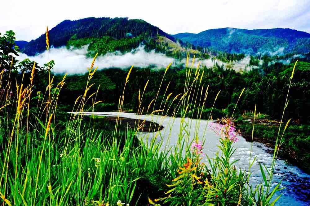 Mt. Baker Wilderness, Washington, July 2014
