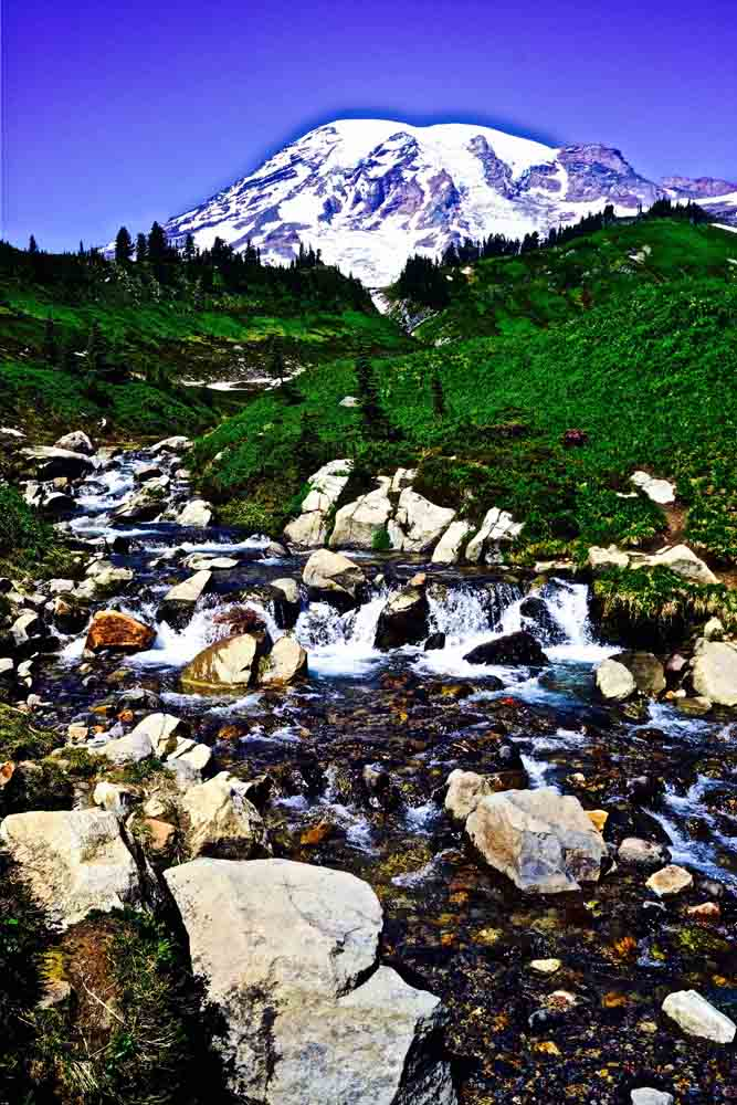 Mt. Rainier, Washington, July 2014