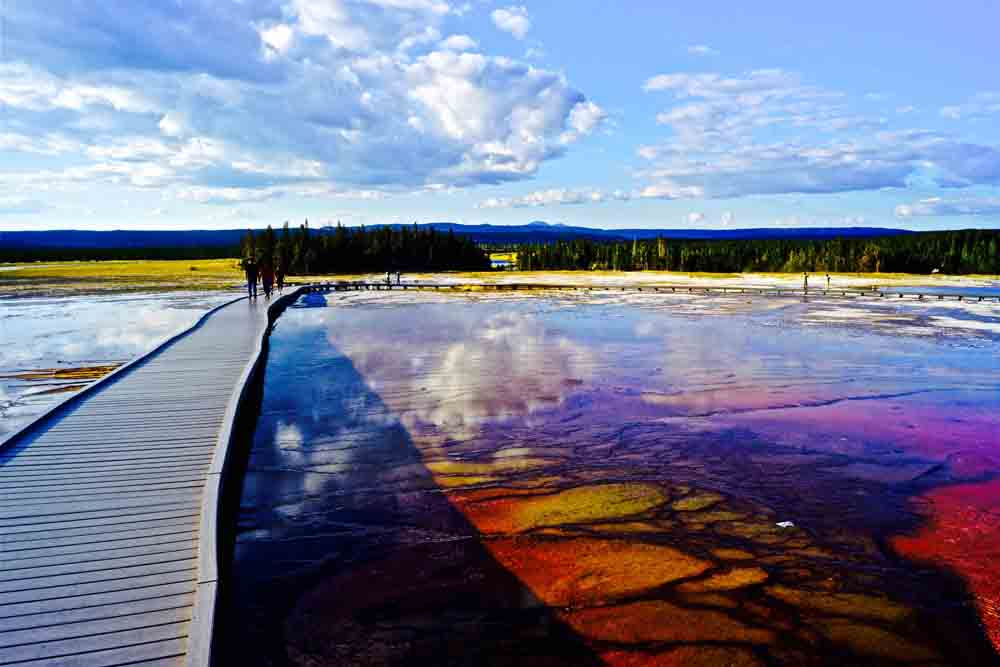 Middle Geyser Basin, Yellowstone National Park, Wyoming, August 2014