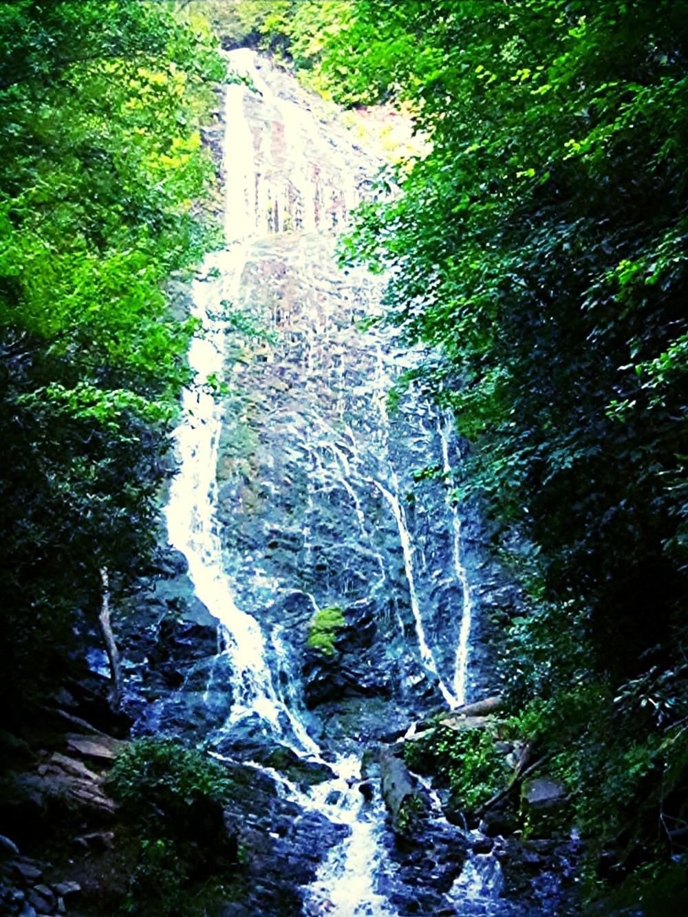 Laurel Falls, Great Smoky Mountains, North Carolina, July 2010