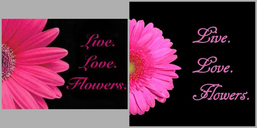 My original vision on the left, Daniel's image on the left using a real flower :)