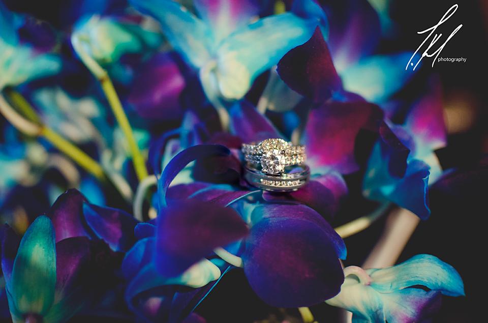 Image by Trisha K. Photography
