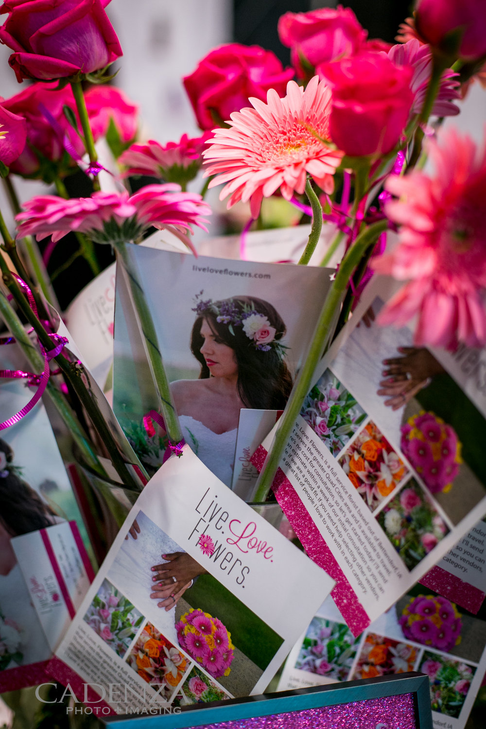 Image by Cadenza Photo Imaging Brochures designed by Leesa Dykstra Designs