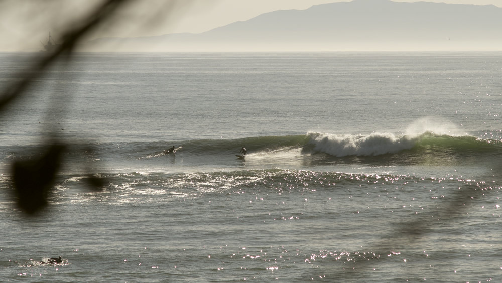 Ventura-1-2.jpg
