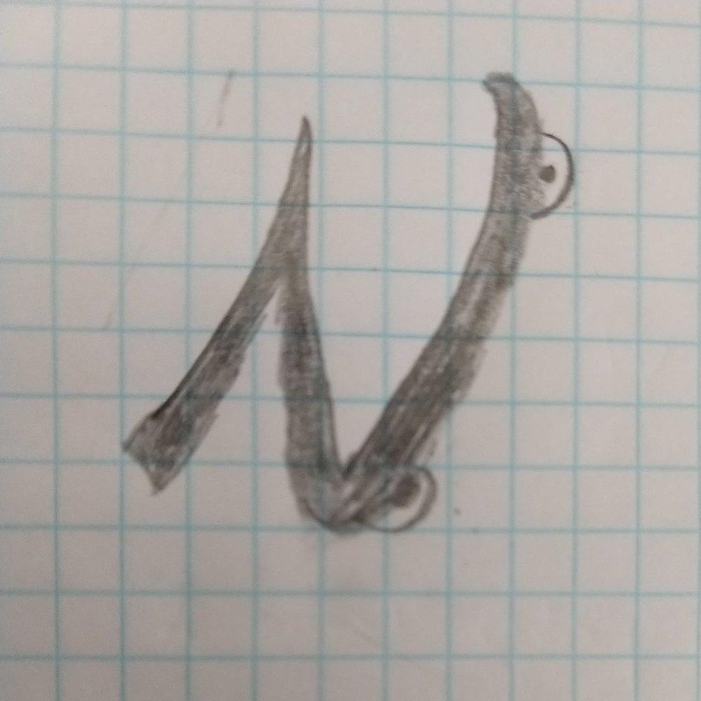 Nicest+Logo.jpg