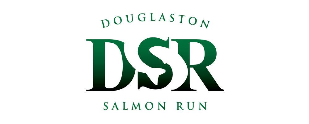 DSR strategy logo.jpg