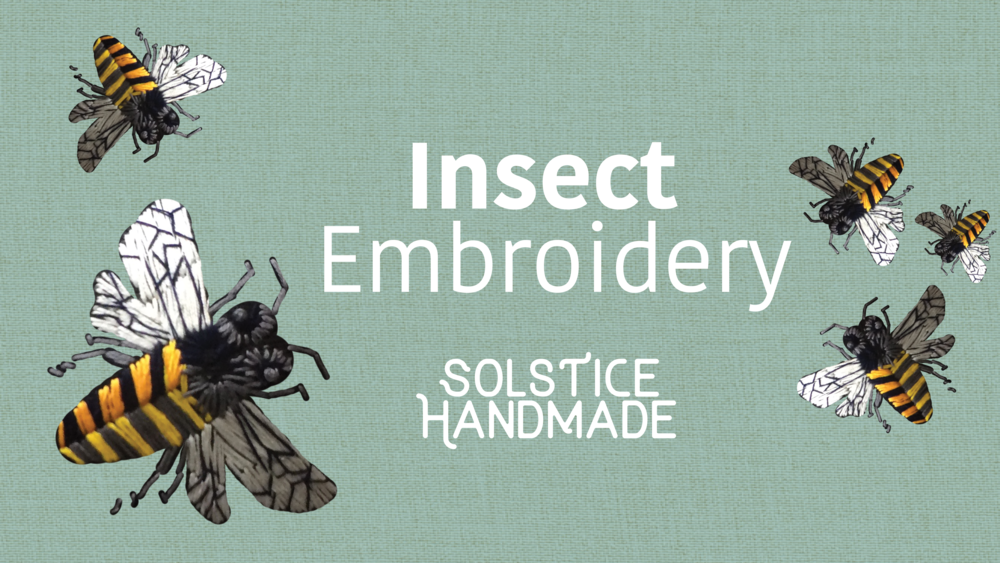 insect header.png