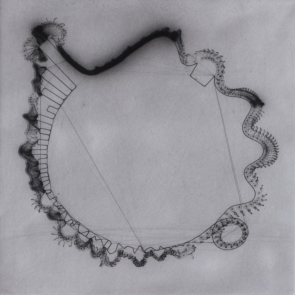 SNAIL TRAIL cycle, palladium light drawing, 2016
