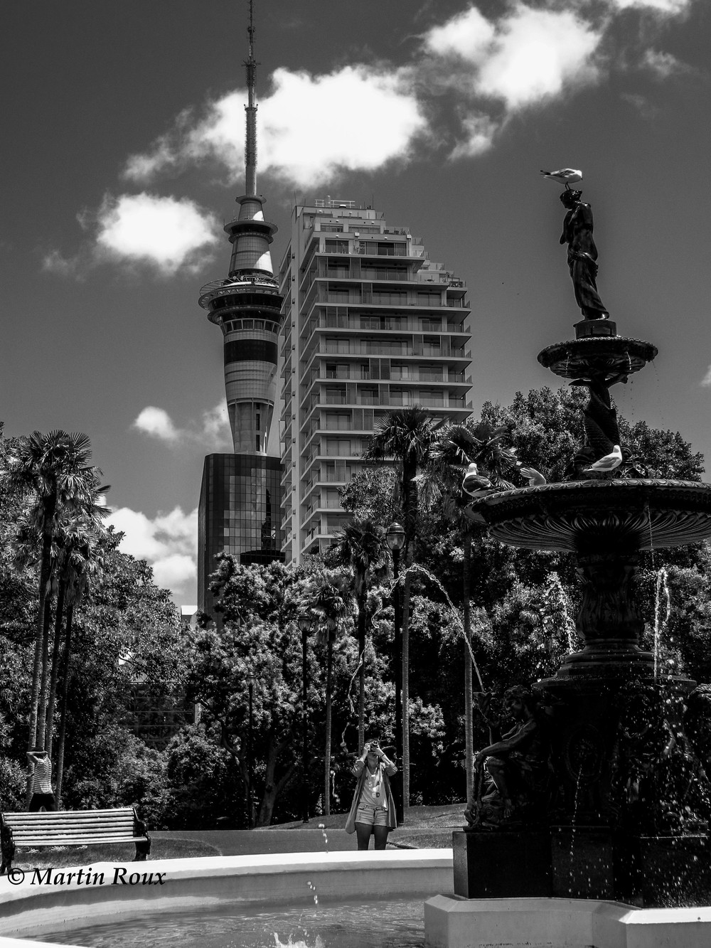 Sky Tower in the distance - sweltering summer's day