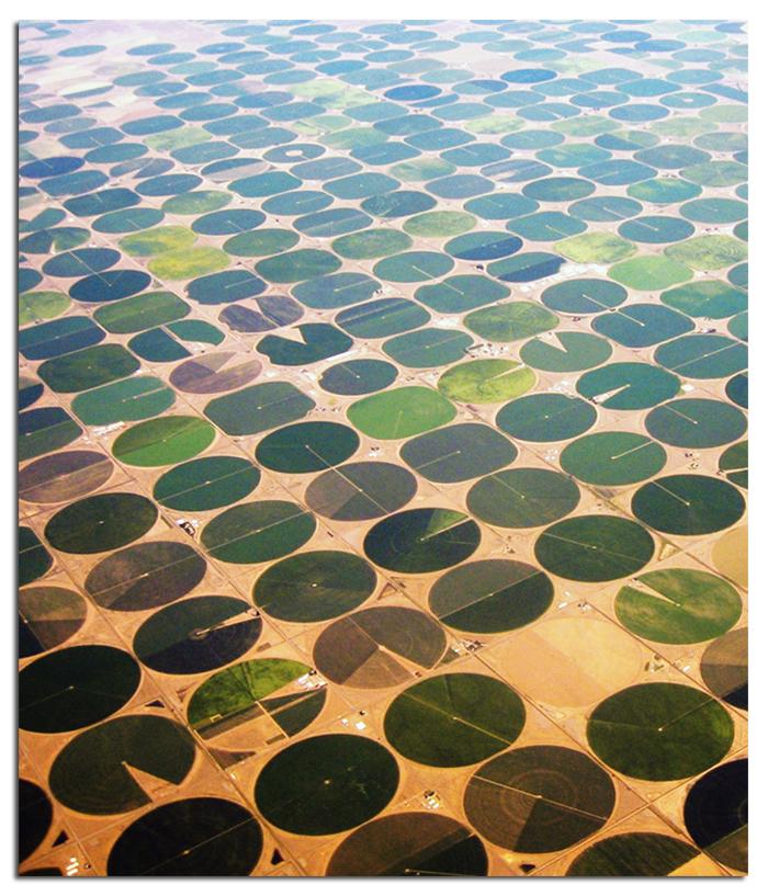 Irrigation 5.jpg