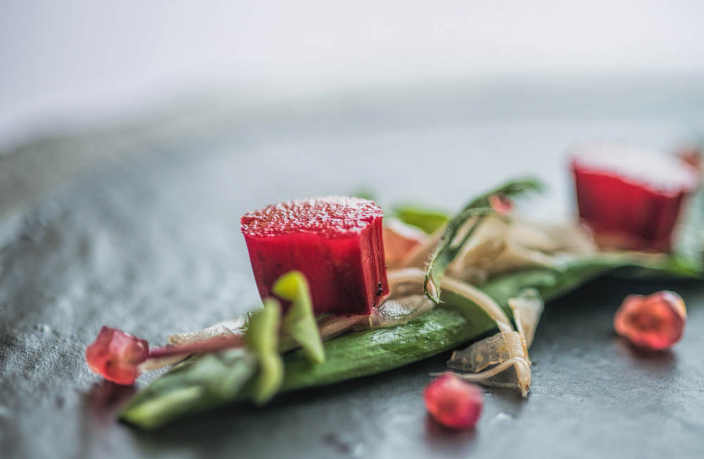 Forced Rhubarb, Pomegranate, Herbs