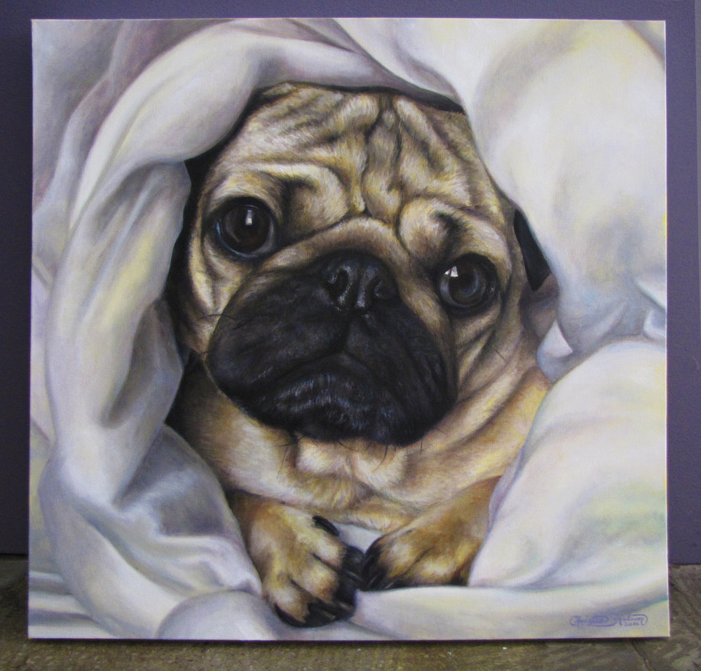 Doug the Pug_24x24_Christie Snelson.jpg