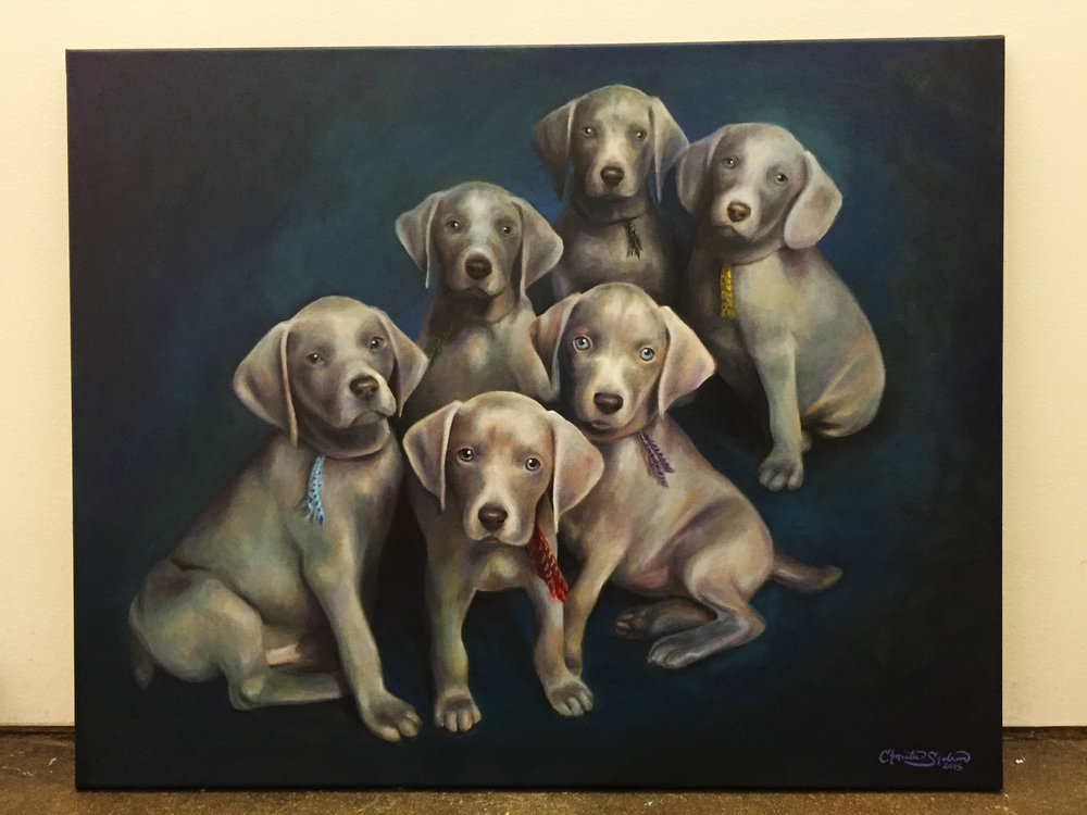 Weimaraner Puppies_Michelle Hunter.jpg