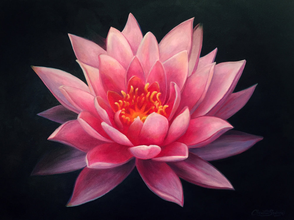 Lotus_Christie Snelson.jpg