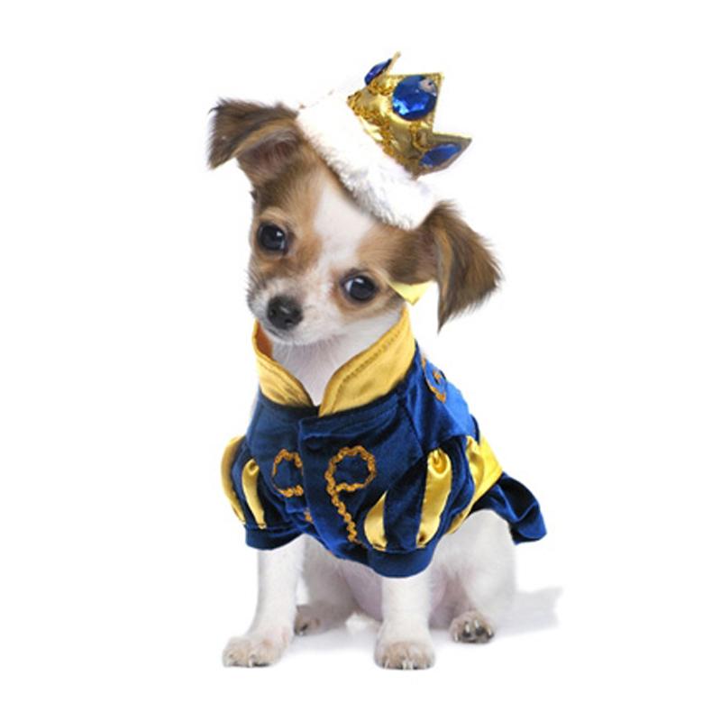 prince-charming-dog-costume-1.jpg