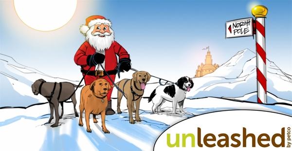 Santa a dogs .jpg