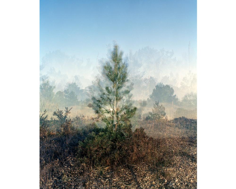 Around The Landscape - 1