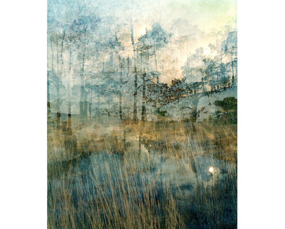Around The Landscape - 2