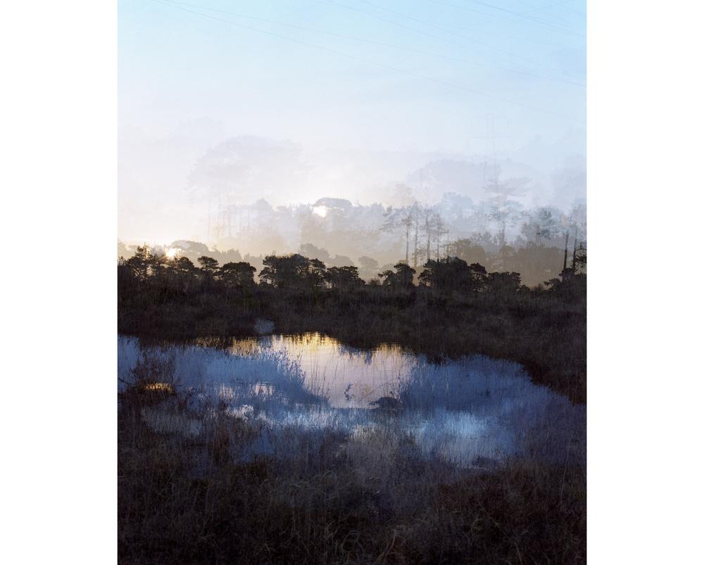 Around The Landscape - 6
