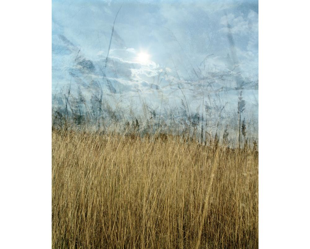 Around The Landscape - 4
