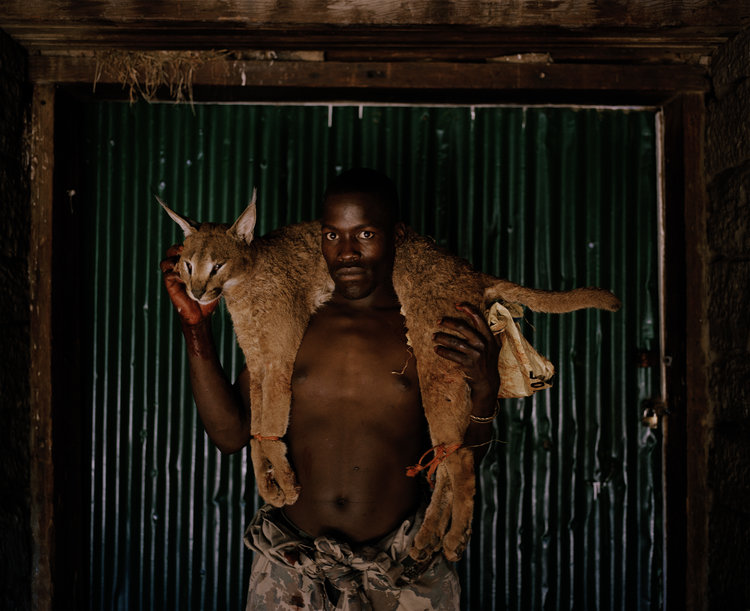 xhosa+huntsman+with+lynx+#+I,+south+africa-from+the+series+'hunters'+David+Chancellor.jpg