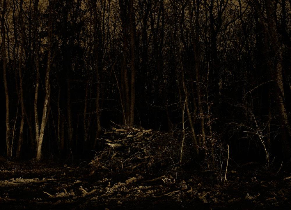 Wood_Pile.jpg