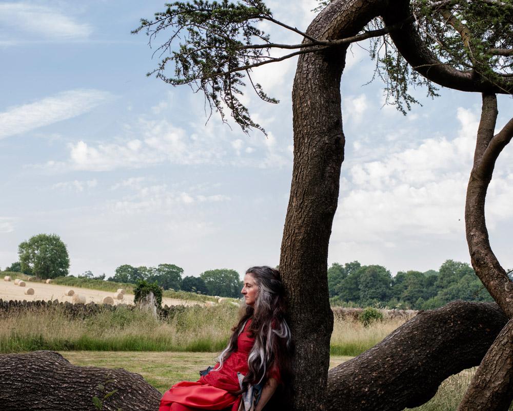 Fallen Tree © Trish Morrissey