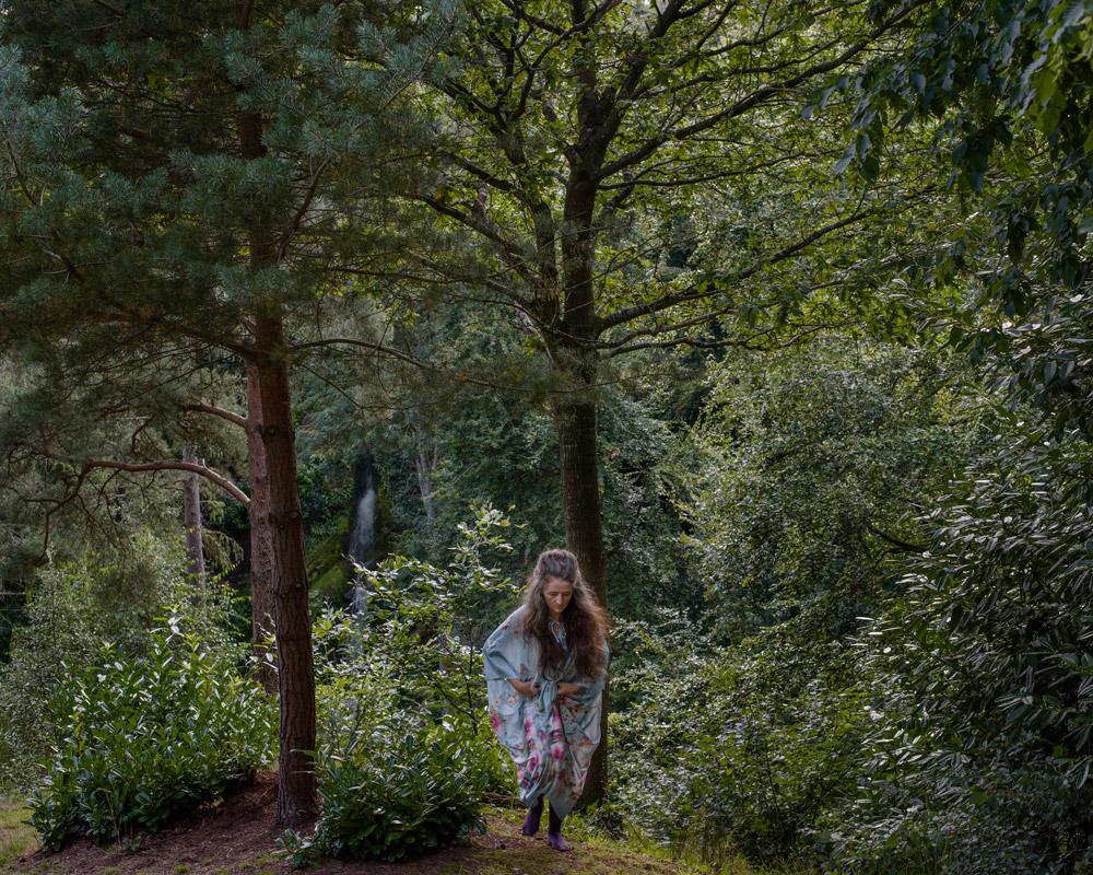 The Woods © Trish Morrissey