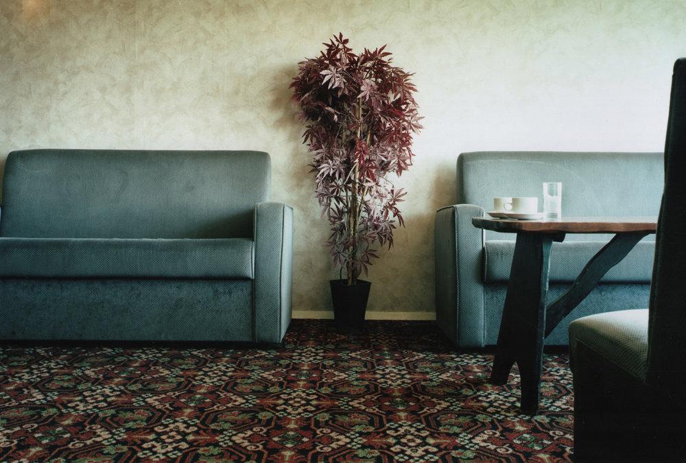 Plant, Watchet, Somerset.jpg