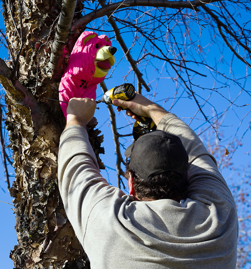 CORY MACNEIL/Citizen photo TJ Jenkins hangs one of his custom made wooden bear heads on a tree in rural Platte County.
