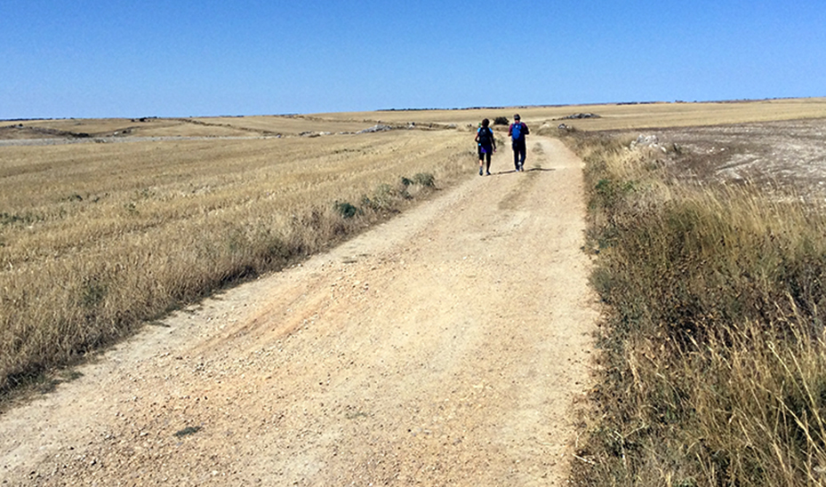 JOHN LARIMER/Special to the Citizen Hiking across the almost featureless Meseta along the trail of the Camino de Santiago will take about four days.