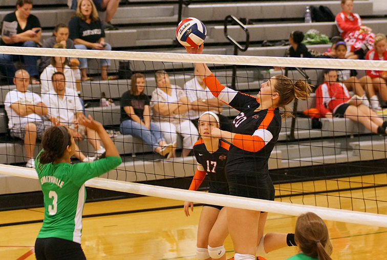PC-VOLLEYBALLRGB.jpg