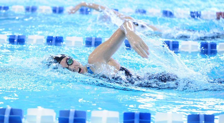 Park Hill swimming shows well in Gold Division Championships Image