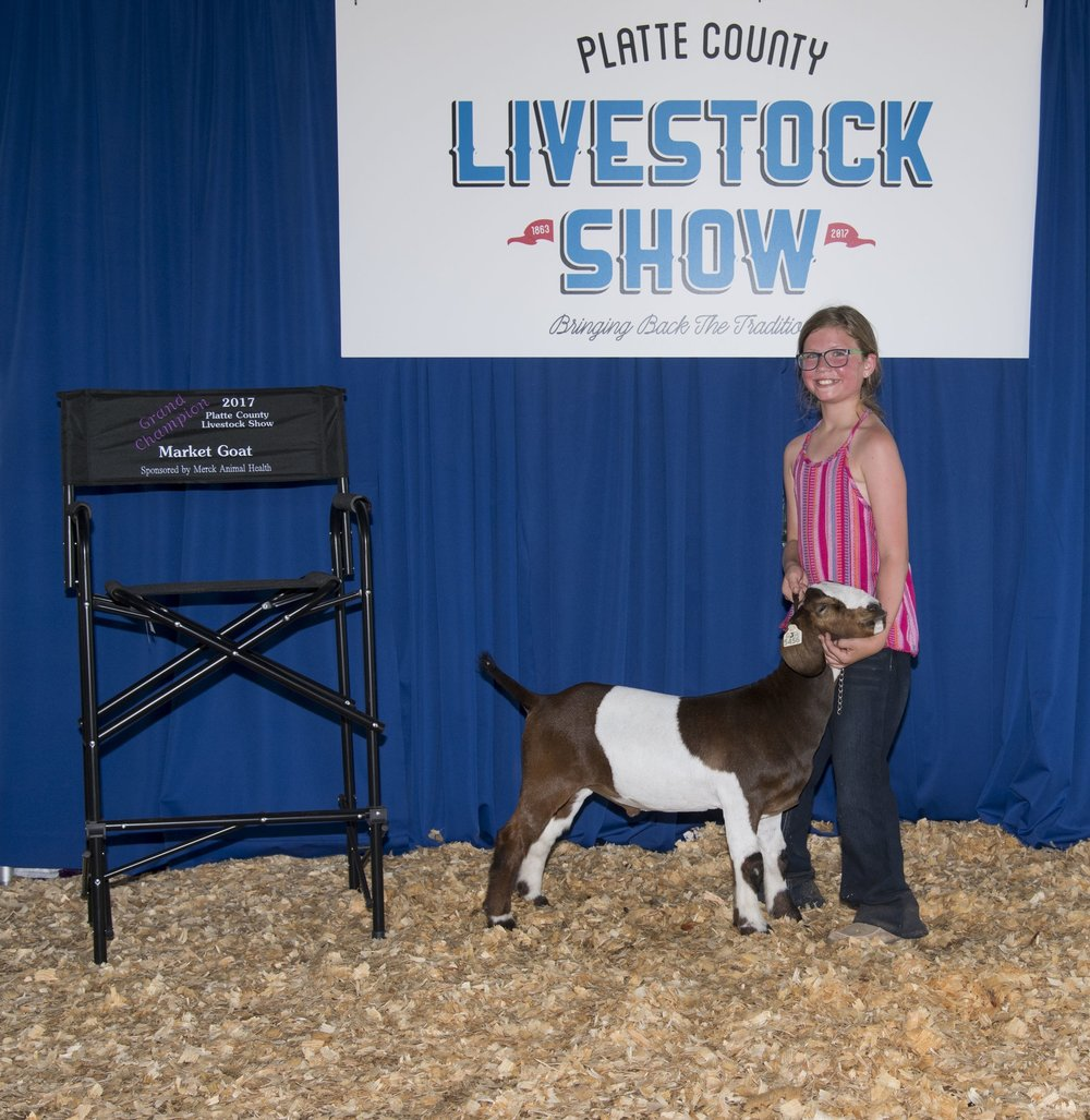 Contributed photo Paisley Nelson of Platte City took home grand champion honors for her market goat in the Platte County Livestock Show held Friday, July 21 during the Platte County Fair in Tracy, Mo.