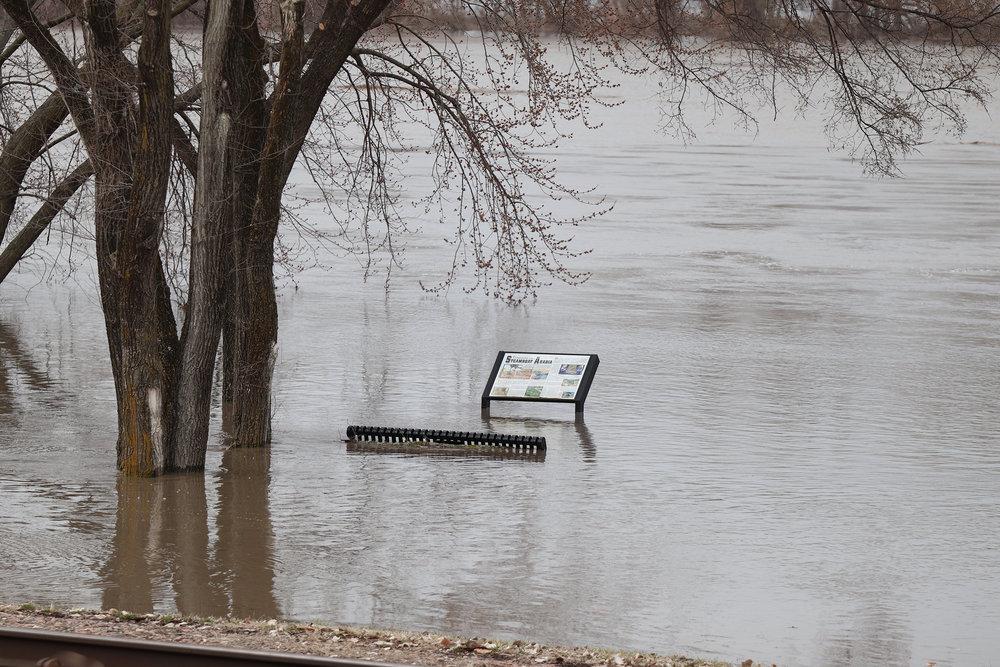 Flood 7 .jpg