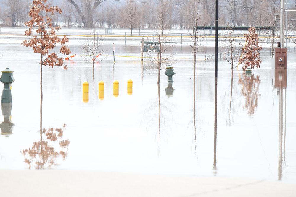 Flood 10.jpg