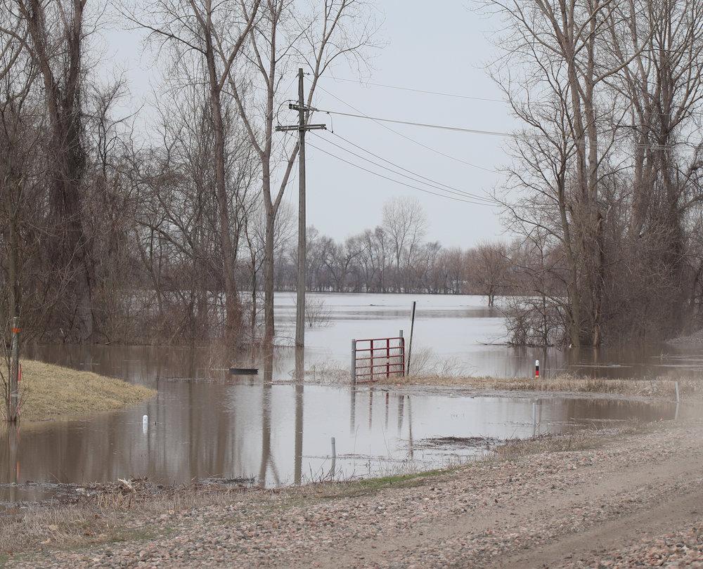 Flood 13.jpg