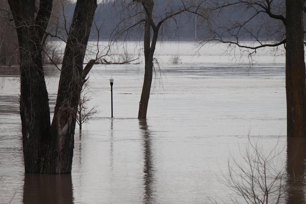Flood 15.jpg