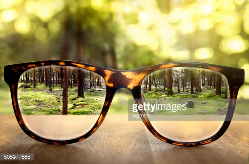 Photo by wgmbh/iStock / Getty Images