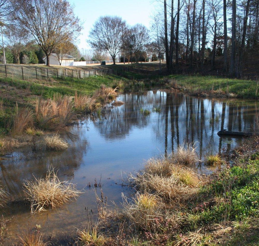 C. Redmon stormwater wetland.jpg