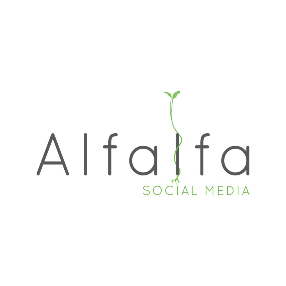 brand design for a social media consultant