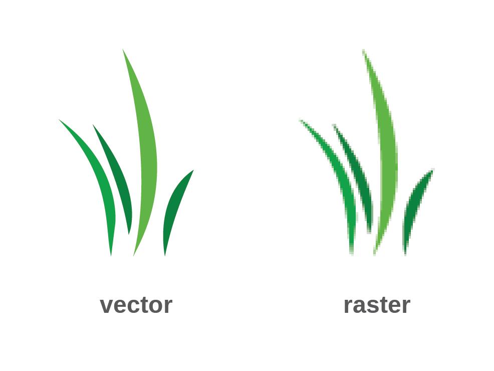 vector v raster.png