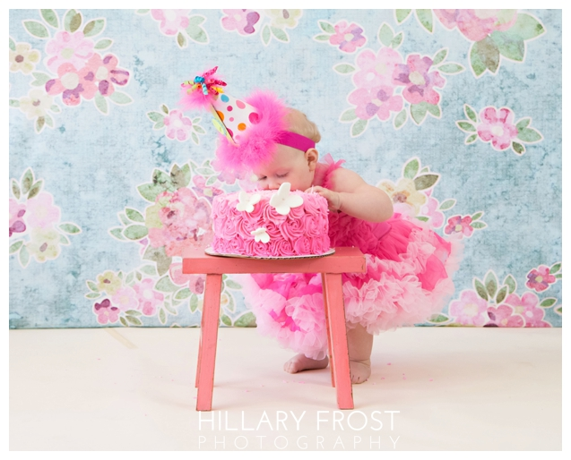 Hillary Frost Photography - Breese, Illinois_1141
