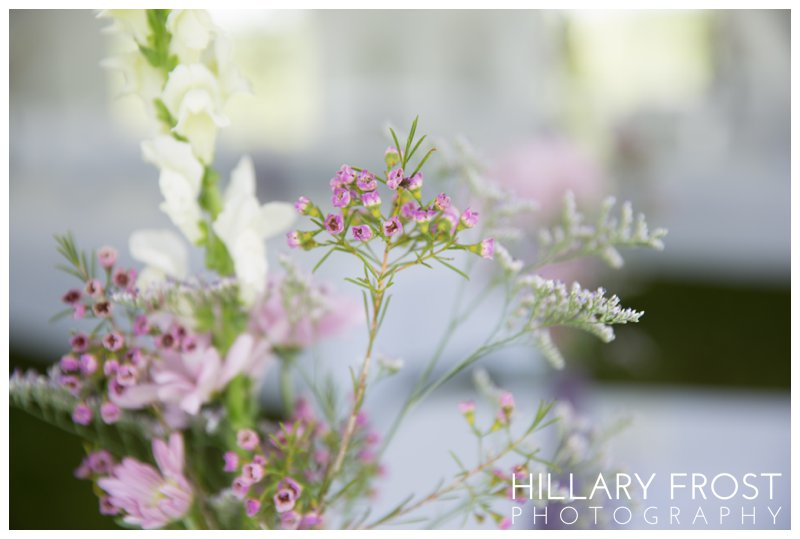 Hillary Frost Photography_4283.jpg