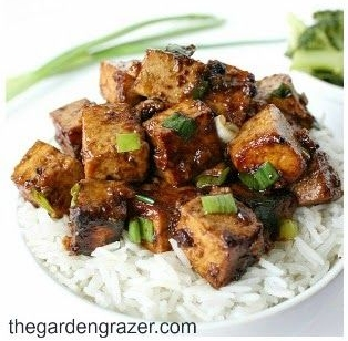 Garlic Tofu with Rice